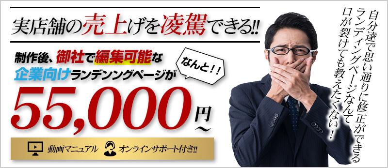 企業様に大人気!編集可能なランディングページが55,000円から!